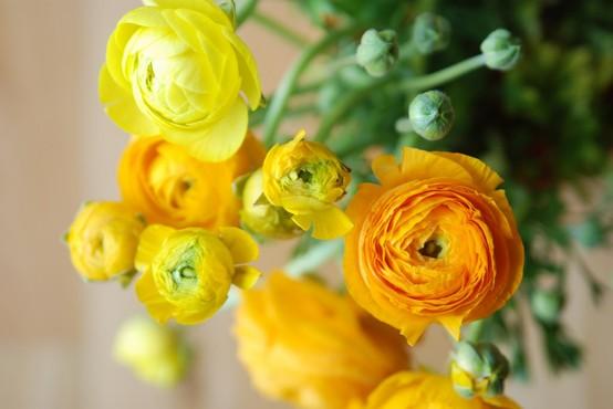 {Inspiration Workshop! — week #11, gardening}