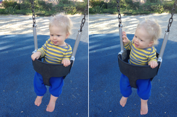 maxwell at the park