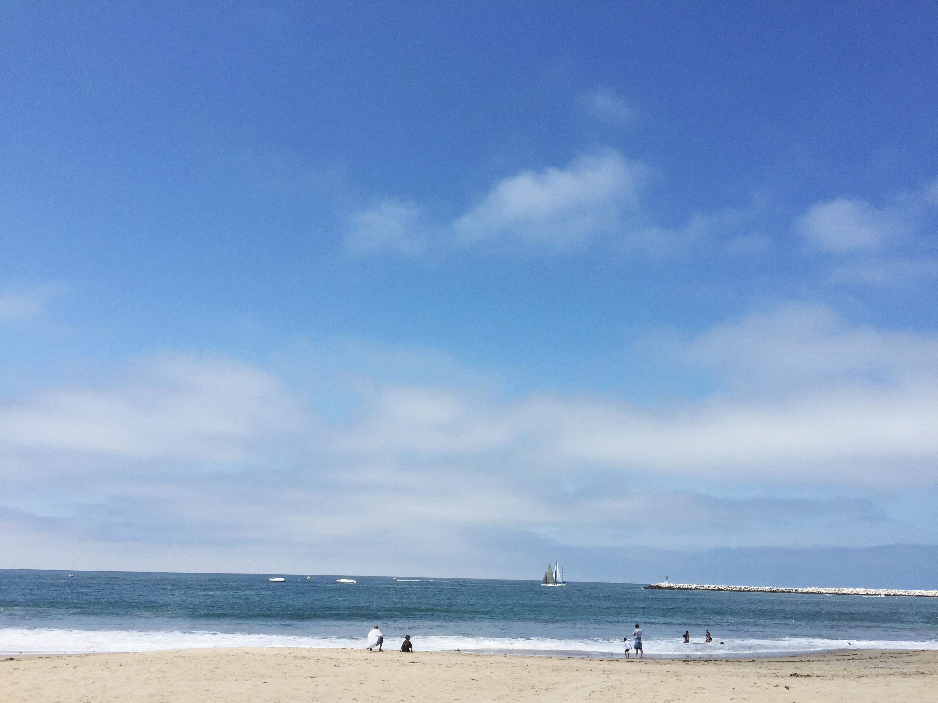 beach maggie whitley